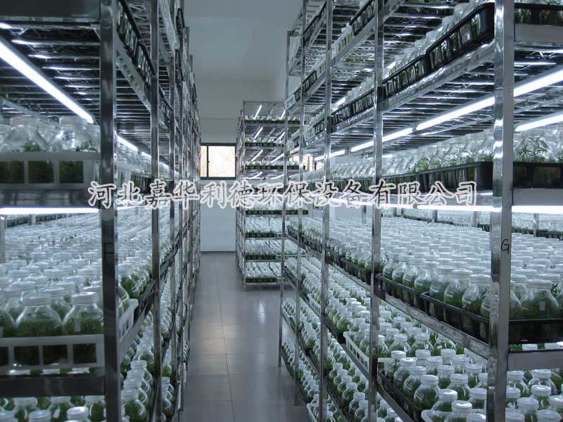 植物组织培养实验室
